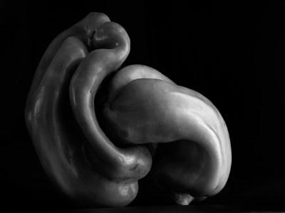 3-Homenaje a Edward Weston nº 1, 1986