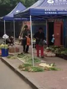 China 3 photo (3)