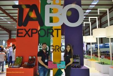 TABO Export lanza su propia marca de sandías, Candy Sweet