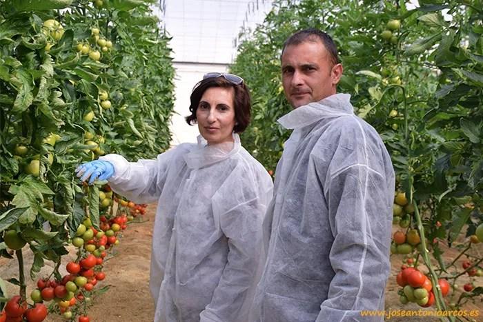 Eva Jerez, técnica de Suministros Céspedes, y José Olivencia, productor de tomate en Viator y en el 21.