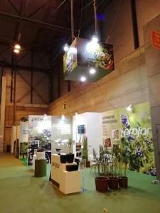 Foto-Stand-Projar-Ferias-anteriores--(2)