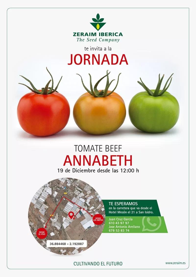 Tomate-beef-Annabeth-de-Zeraim