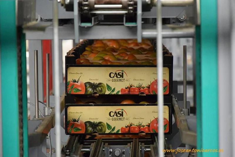 CASI-en-Fruitlogistica