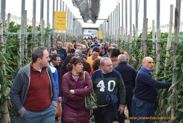 Kation reúne a 550 agricultores en El Ejido