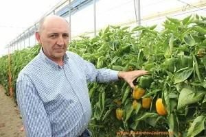 Manolo Martín, agricultor.