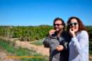 Entre cítricos y alcachofas en Castellón