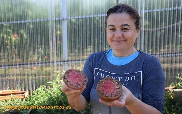 Tomate negro de Santiago de Verduras Chelín.