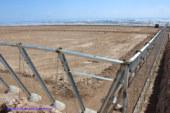 El Ejido registra en 3 meses más de 100 licencias para modernizar invernaderos