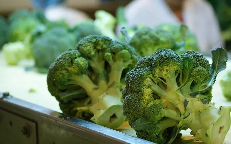 Brócoli. Superalimentos.