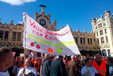 Valencia se llena de agricultores de toda España para defender la citricultura