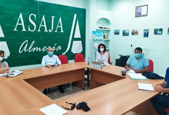 Asaja, Coag y Upa retoman la unidad de acción del sector hortofrutícola