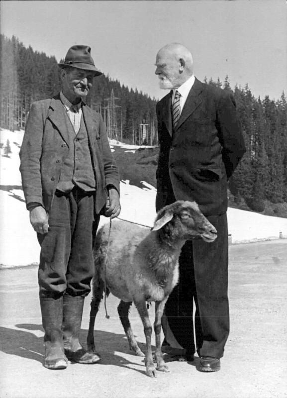Körner 1951, Osttirol