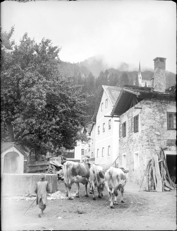 Lavant 1910, Dorfbild