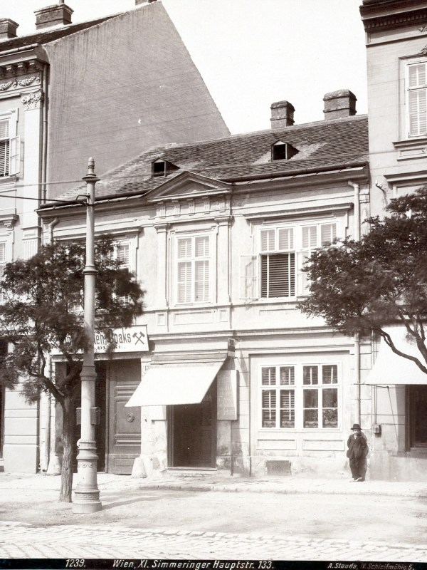 Wien 1899, Häuserbild