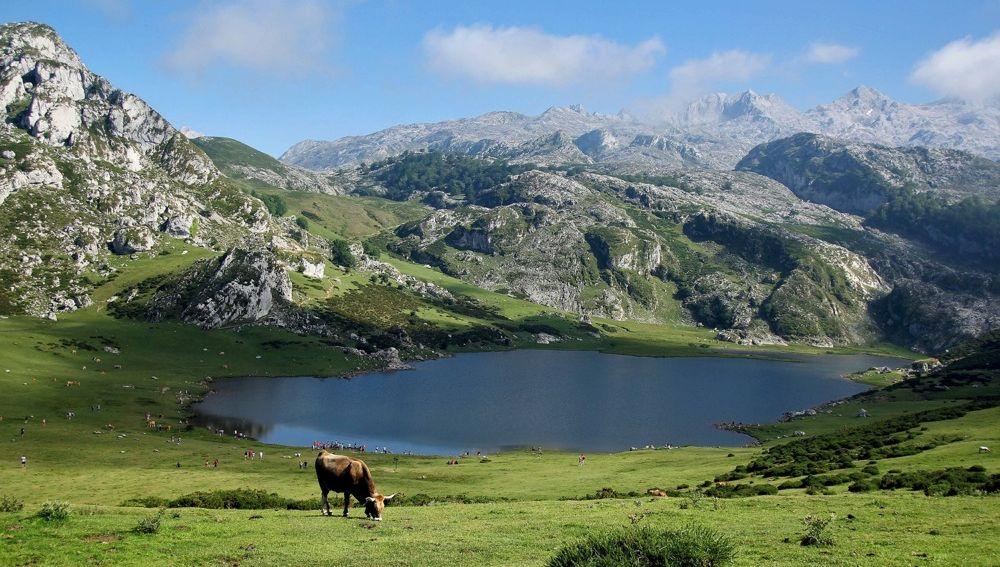 Ecos de Asturias