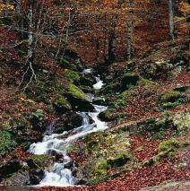 Valle de Hecho, Huesca