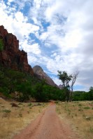 The trail in the Zion Valley