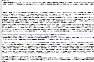 view of the image in text editor