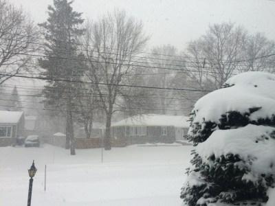 December 29, 2015: Snowed In!
