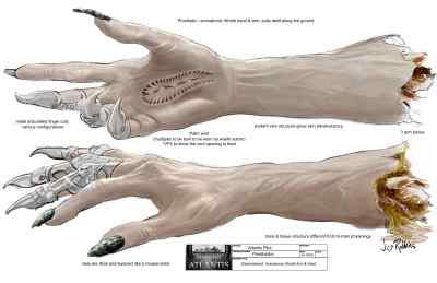 dismembered hand