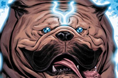 Top 10 Furry Superheroes!