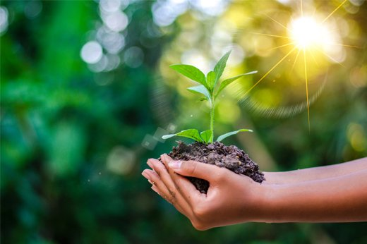 4 Best Green Solutions for Sustainability in the Printing IndustryImportant
