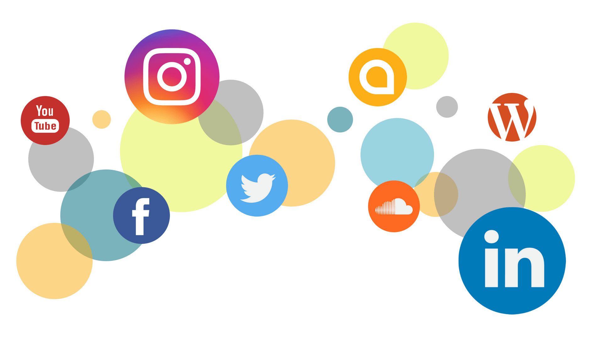 The Power of Social Media Networks