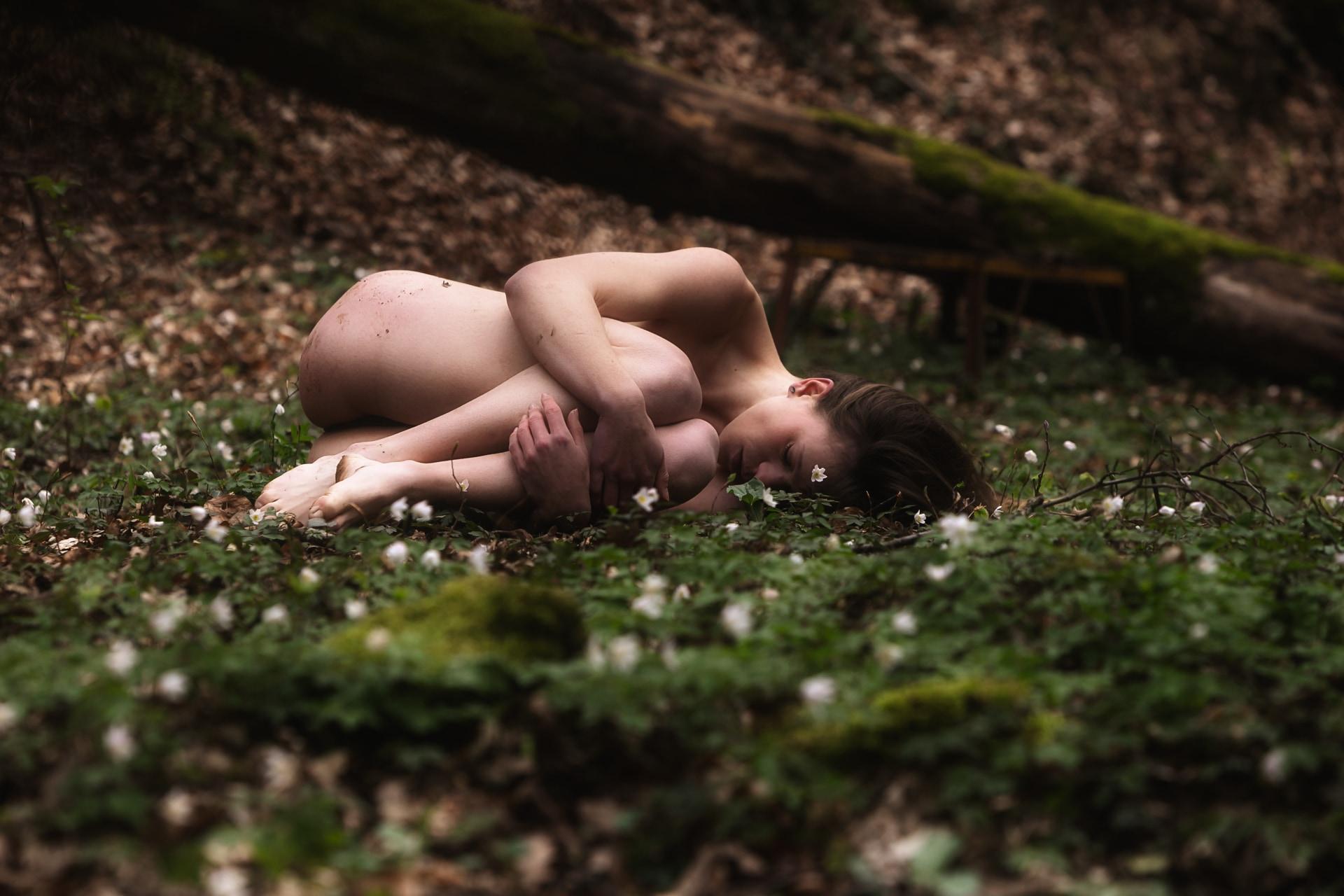 nue-foret-printemps-2