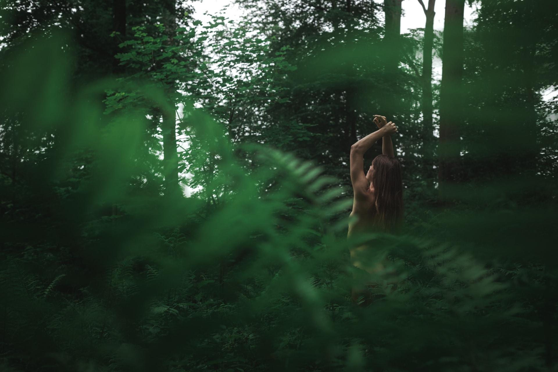 Mél - Forest - v1-photo-foret-nue-artistique-fougere-3