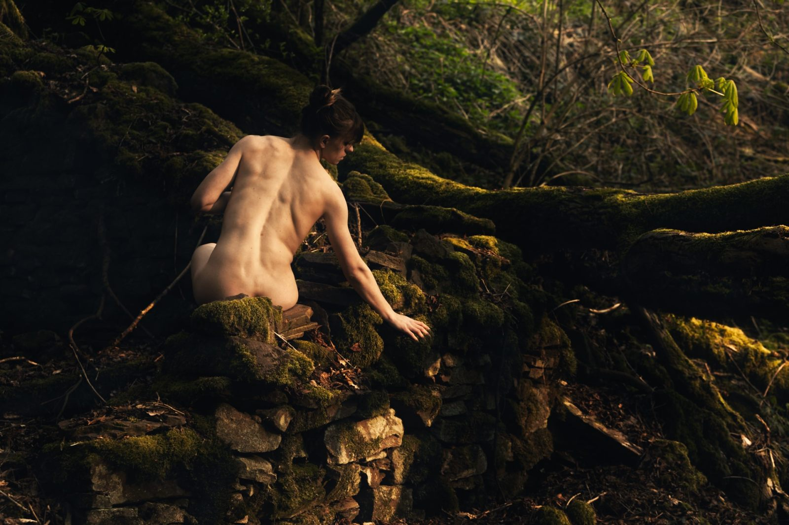 forest-and-nudes-III-