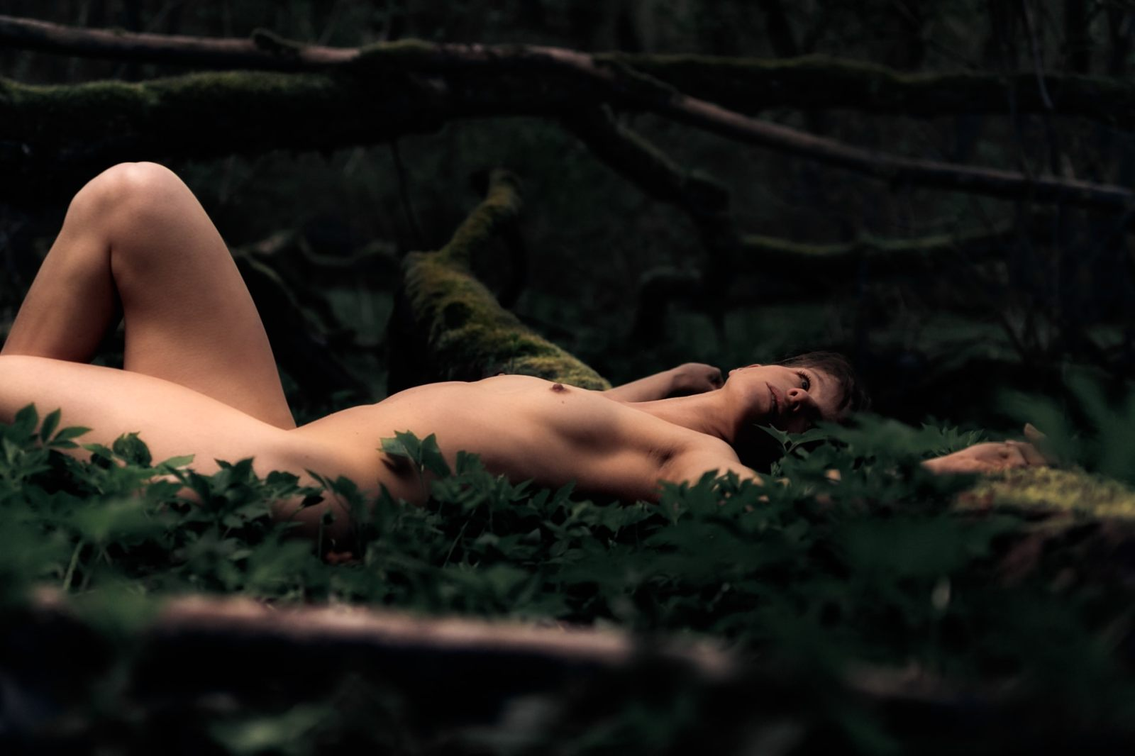 loneliness-forest-and-nudes-III-