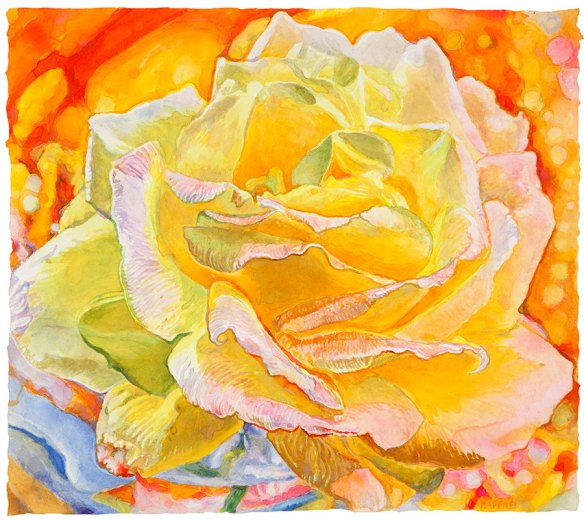 Dawn Rose watercolor on paper 44.5 x 49.5 cm - 17.50 x 19.50 in. 2017