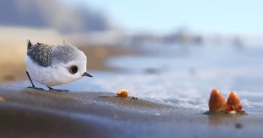 cute-new-short-film-piper-pixar-fb__700-png