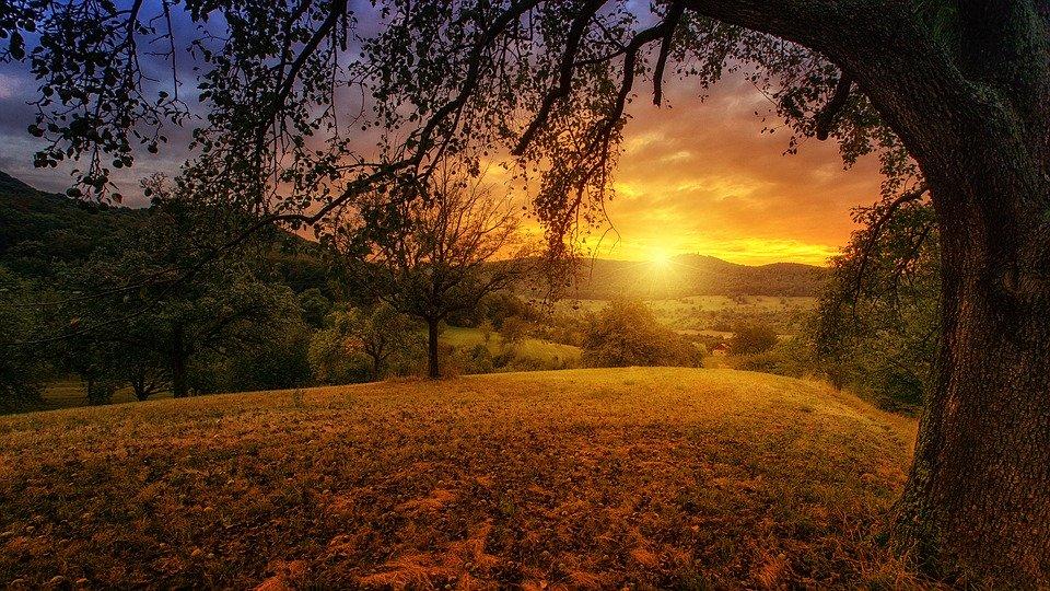 Puesta de sol  tras unos montes, en el campo visto desde una colina bajo un árbol