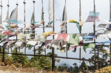Bhutan - Thrumshing La Pass