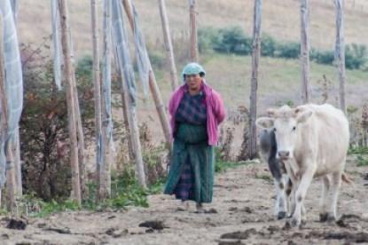 Bhutan - Hymalayan rural life