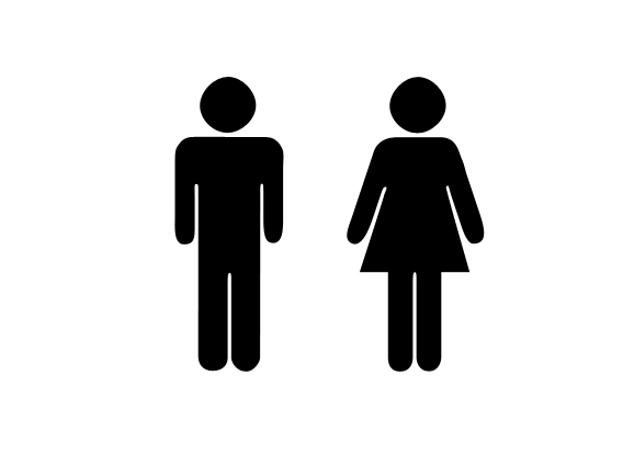 male and female roles in society essay