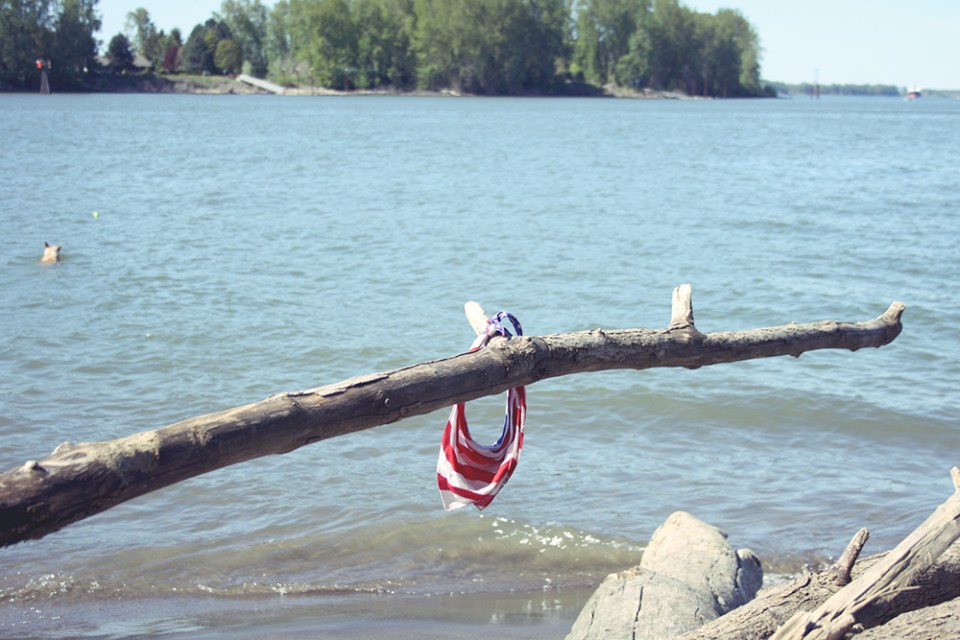 The dog who owns this bandanna is in the water, to the left.