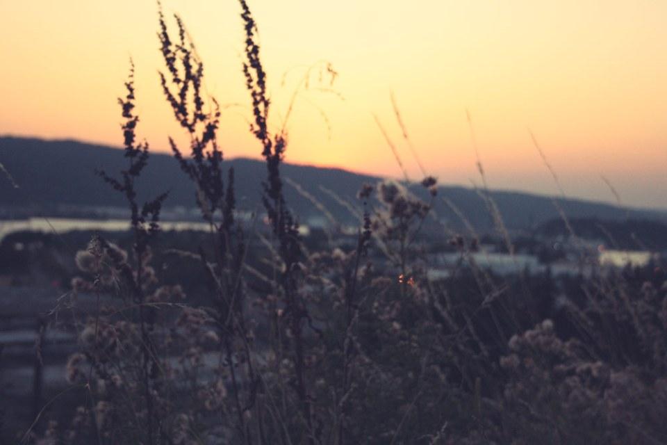 MyPortland_August-2