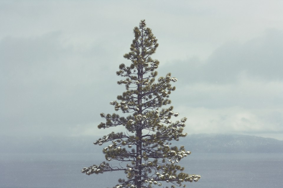 Band_Tahoe-Trip-12