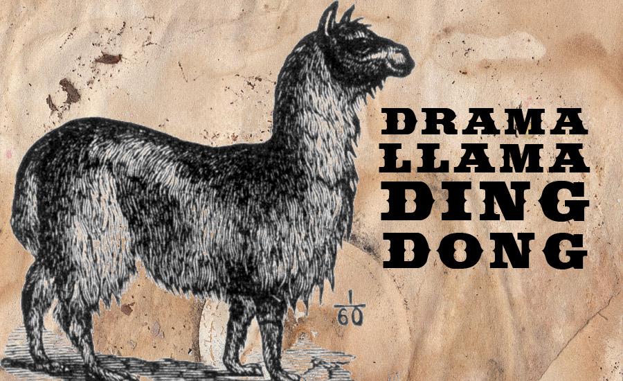 Drama Llama Ding Dong