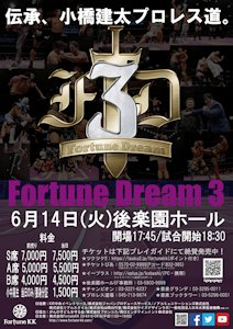 fortunedream3
