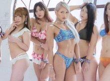 Bikiniing 9 - Banner
