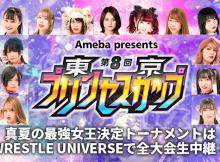 Tokyo Princess Cup 2021 Banner