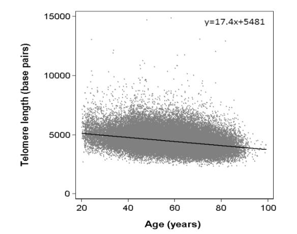 Telomere length vs age, new data