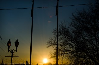 Sunset Behind Tree Flag Poles and Lamp