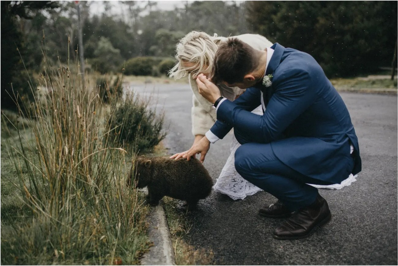 How to elope at Cradle Mountain