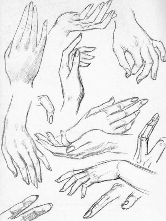Female Hand Drawing Reference : female, drawing, reference, PLATE, Female, Drawing, Hands, Joshua