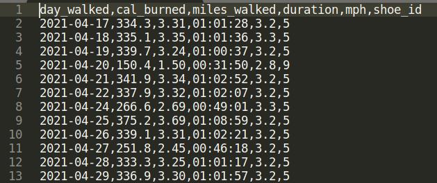 csv-file-data