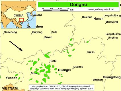 Dongnu in China